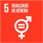 05 - Igualdade de Gênero.png