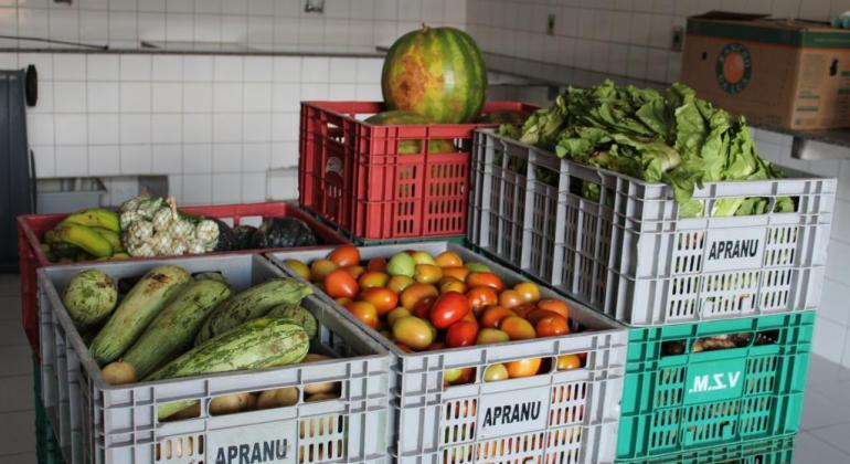 Prefeitura amplia Banco de Alimentos e mais instituições serão beneficiadas